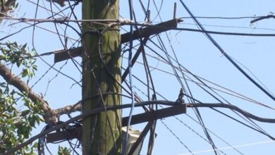 Photo of სიღნაღის მუნიციპალიტეტის ორი სოფელი ელექტროენერგიის გარეშე დარჩა