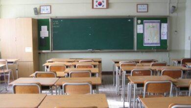 Photo of ვფიქრობ, რეალური შანსია, 4 ოქტომბრიდან სკოლების დიდ ნაწილში სწავლა განახლდეს