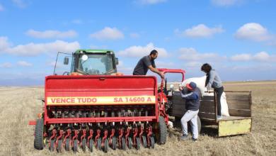 Photo of ევროკავშირი და FAO საქართველოს მთავრობას კლიმატგონივრული  სოფლის მეურნეობის მიმართულების გაძლიერებაში ეხმარებიან