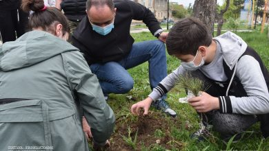 Photo of თელავში, ბახტრიონის ქუჩაზე გამწვანების აქცია ჩატარდა
