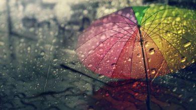 Photo of დღეს ლაგოდეხში, გურჯაანსა და სიღნაღში წვიმაა მოსალოდნელი